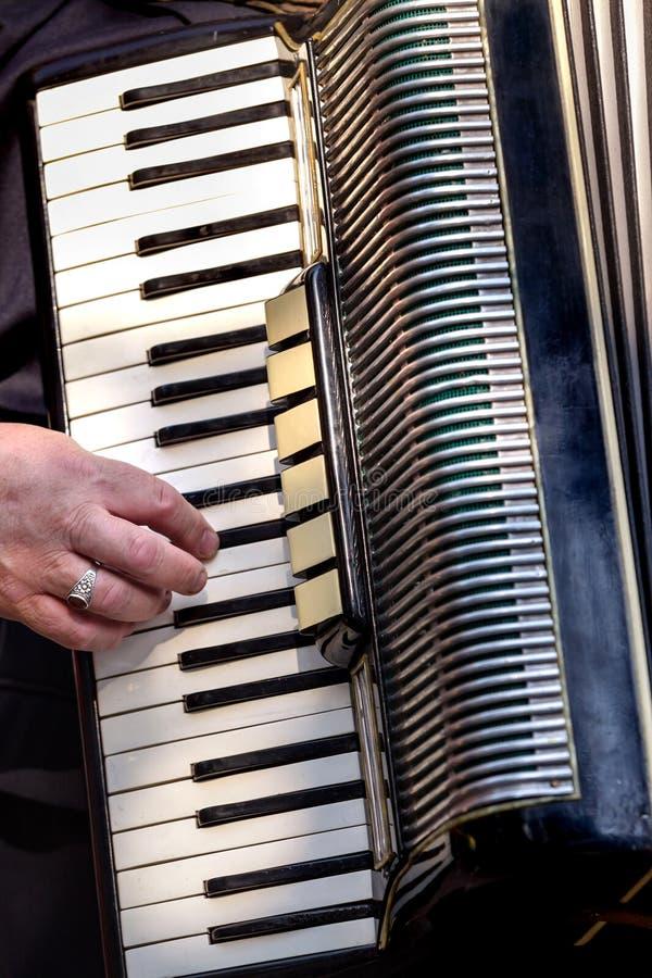 Игрок аккордеона стоковая фотография