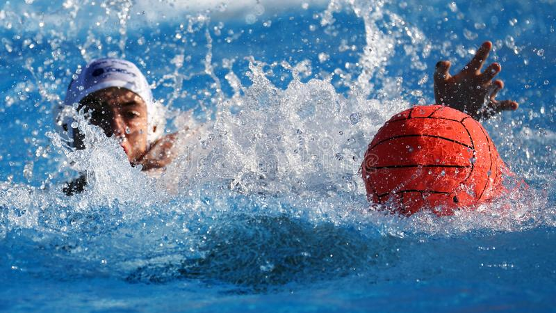 Игрок во время спички конкуренции, спорт водного поло стоковые изображения rf