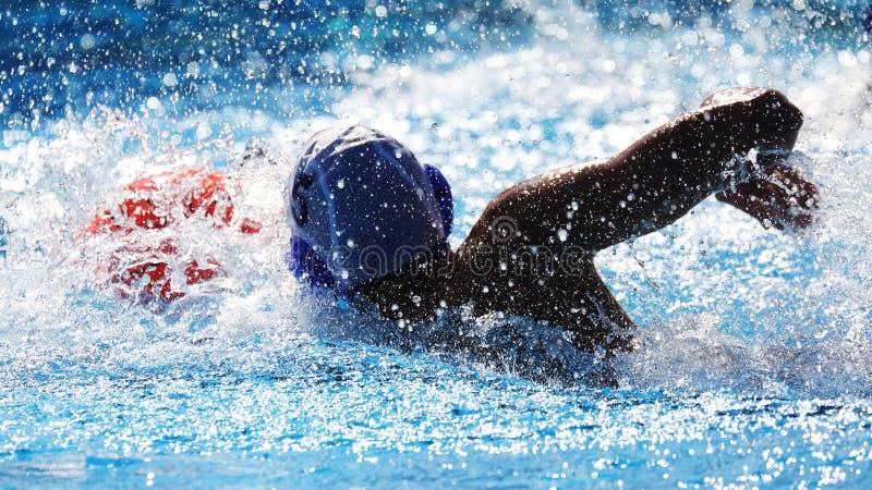 Игрок во время спички конкуренции, спорт водного поло стоковое фото rf