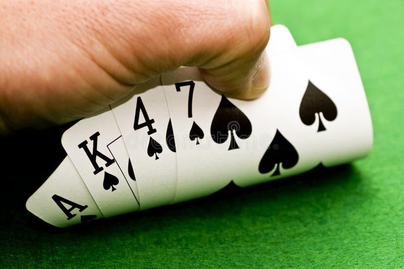 Игрок в покер стоковые фотографии rf