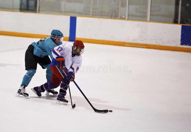 игрок льда хоккея стоковые изображения rf