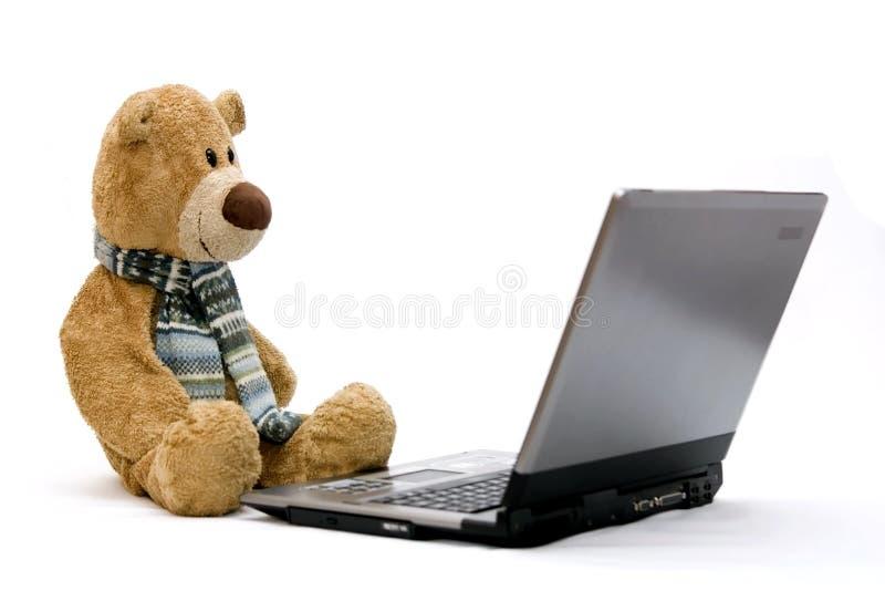 игрушечный компьтер-книжки компьютера медведя стоковые изображения rf