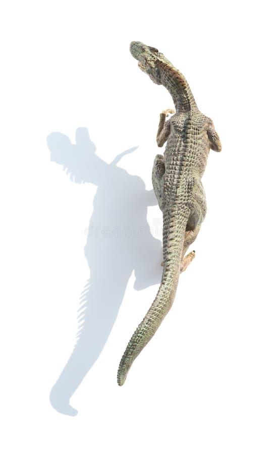 Игрушка аллозавра взгляд сверху на белой предпосылке с тенью стоковая фотография