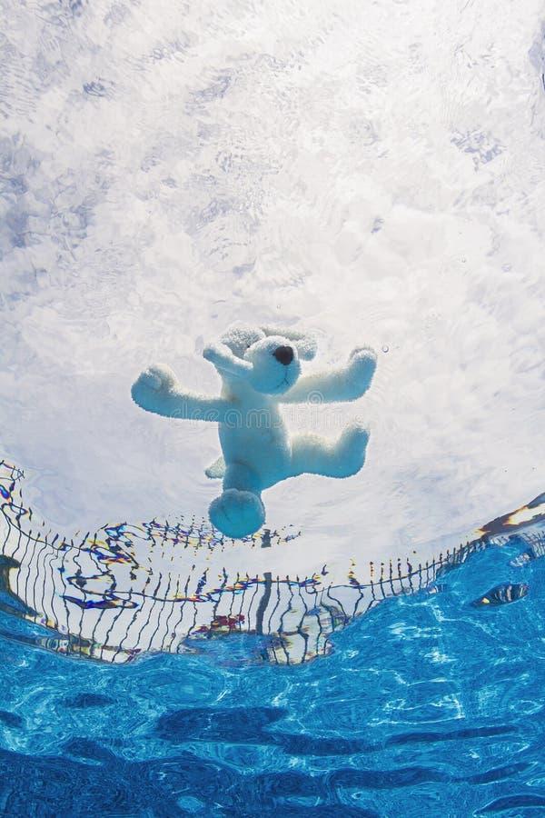 Игрушка плюша в бассейне стоковое изображение
