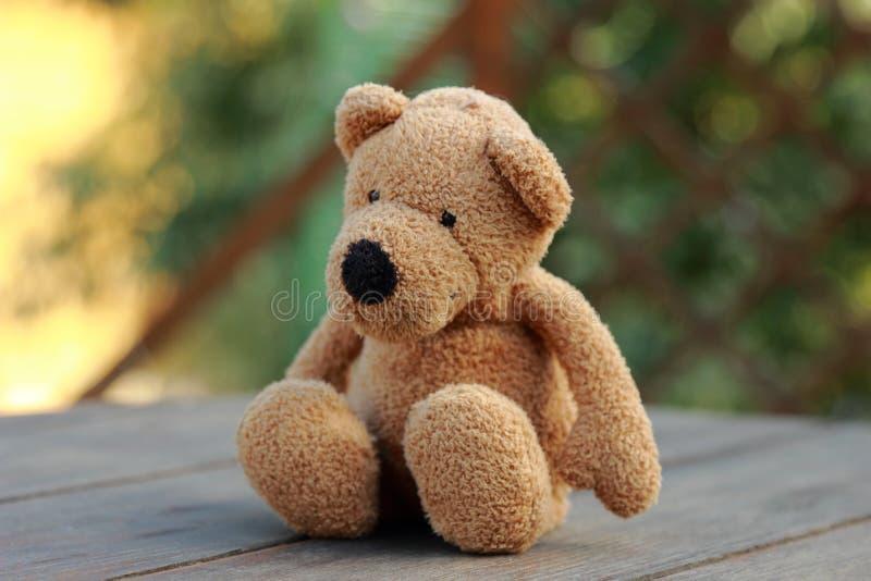 Игрушка плюшевого медвежонка стоковые фото