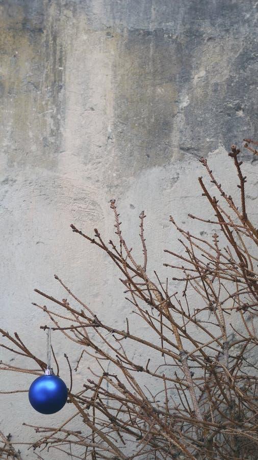 Игрушка рождества на сухой ветви ели стоковое изображение rf
