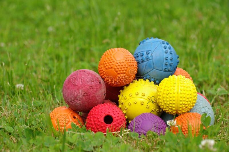Download Игрушка шарика на собаки 3 стоковое изображение. изображение насчитывающей ballooner - 41650181