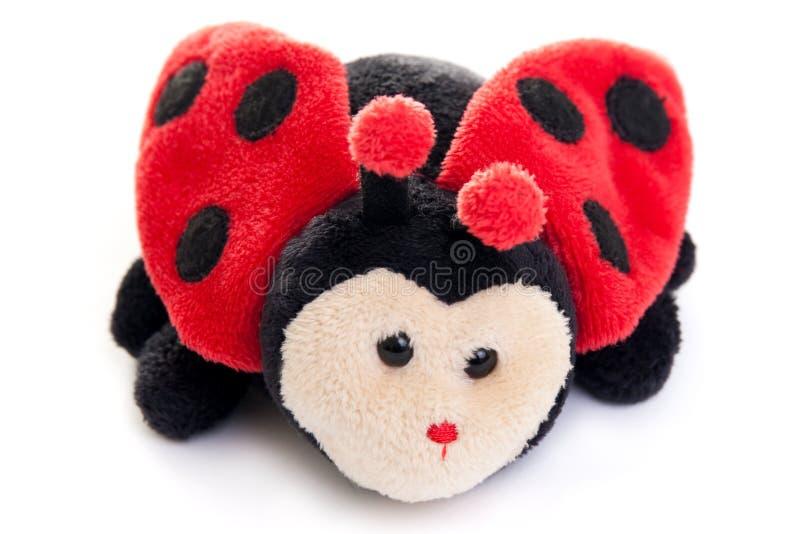 Игрушка Ladybird стоковая фотография