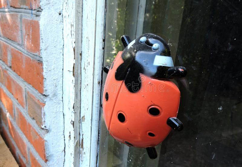 Игрушка Ladybug на старом окне стоковая фотография