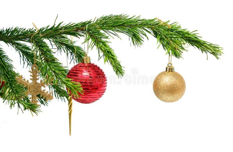 Игрушки рождества на хворостине ели над белизной стоковые изображения