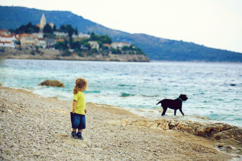 Игры ребёнка с собакой стоковая фотография