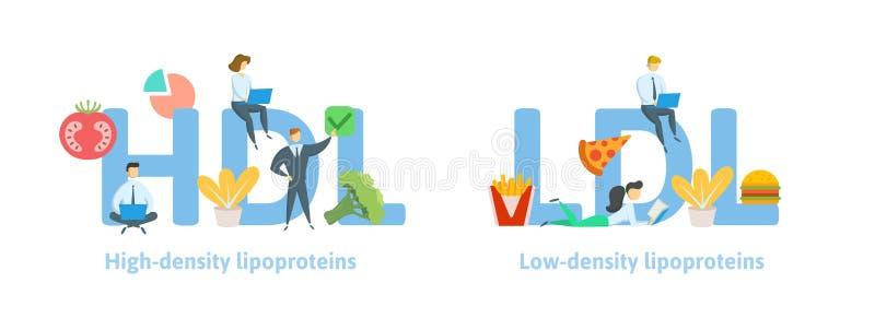 Идеи знамени HDL и LDL Концепция с ключевыми словами, письмами, едой, и значками Плоская иллюстрация вектора Изолировано на белиз иллюстрация штока
