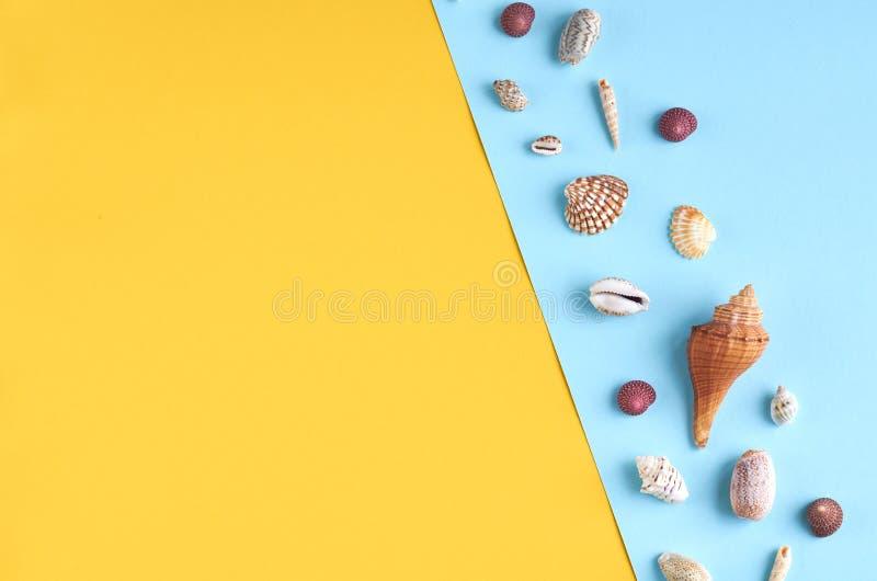 Идея состава летних каникулов, seashells на голубой и желтой предпосылке стоковые фотографии rf
