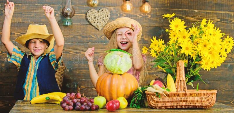 Идея фестиваля падения начальной школы Фестиваль сбора осени Дети играют капусту тыквы овощей Мальчик девушки детей стоковое изображение