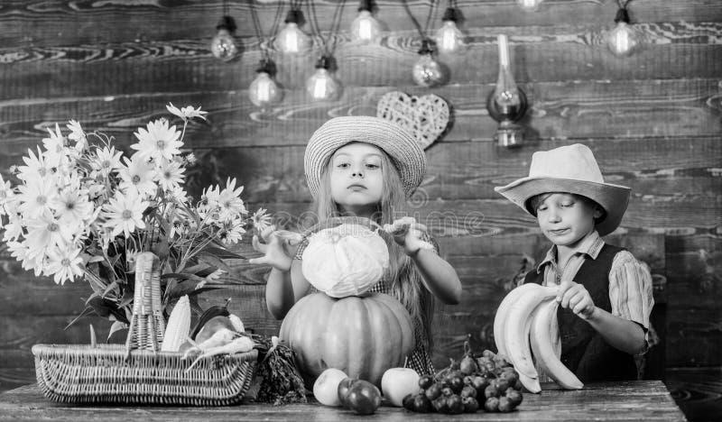Идея фестиваля падения начальной школы Фестиваль сбора осени Отпразднуйте праздник сбора Дети играют овощи стоковые изображения rf