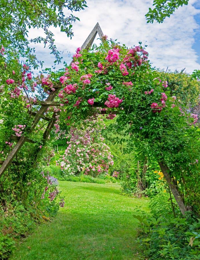 Идиллический розовый сад стоковое фото rf