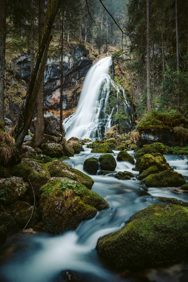 Идилличная сцена водопада с мшистыми утесами в лесе стоковое изображение rf
