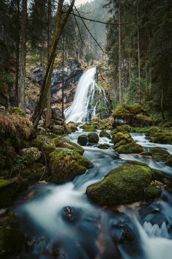 Идилличная сцена водопада с мшистыми утесами в лесе стоковые изображения rf