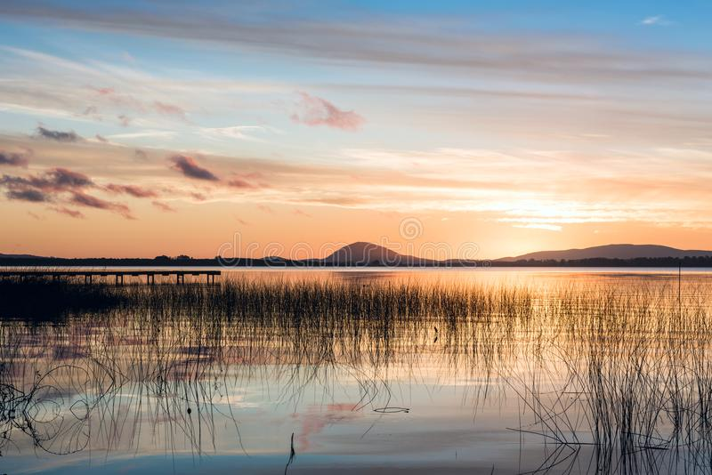 Идилличное озеро верб в отделе Maldonado Уругвая стоковая фотография rf