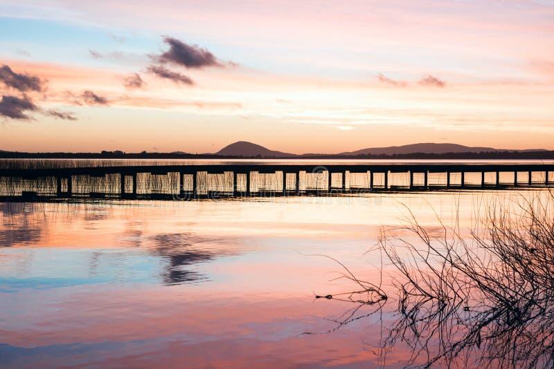 Идилличное озеро верб в отделе Maldonado Уругвая стоковое изображение rf