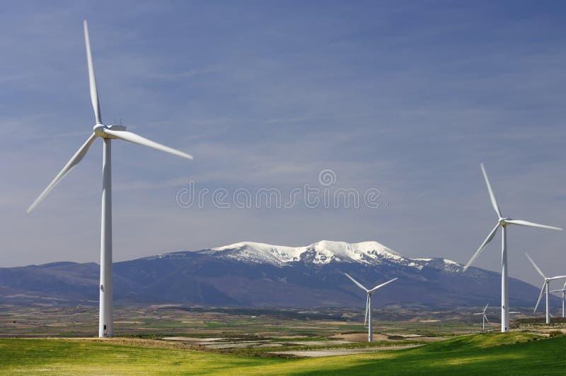 идилличные ветрянки стоковое изображение rf