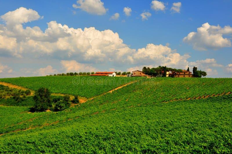 Идилличный день в Тоскане, Италия стоковые изображения rf
