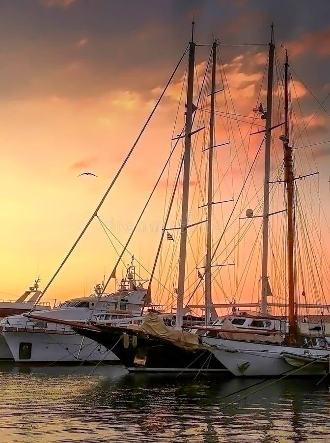 Идилличный заход солнца в Марине Zeas с чайкой над яхтами стоковые фото
