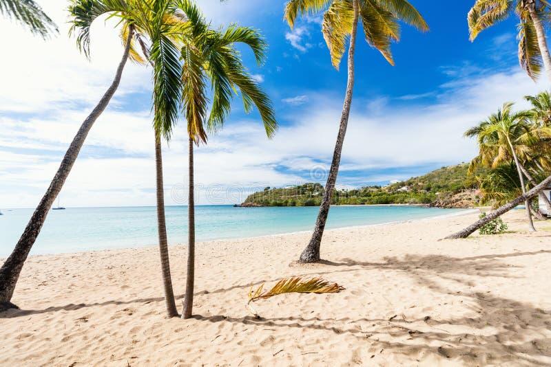 Идилличный пляж на Вест-Инди стоковая фотография rf