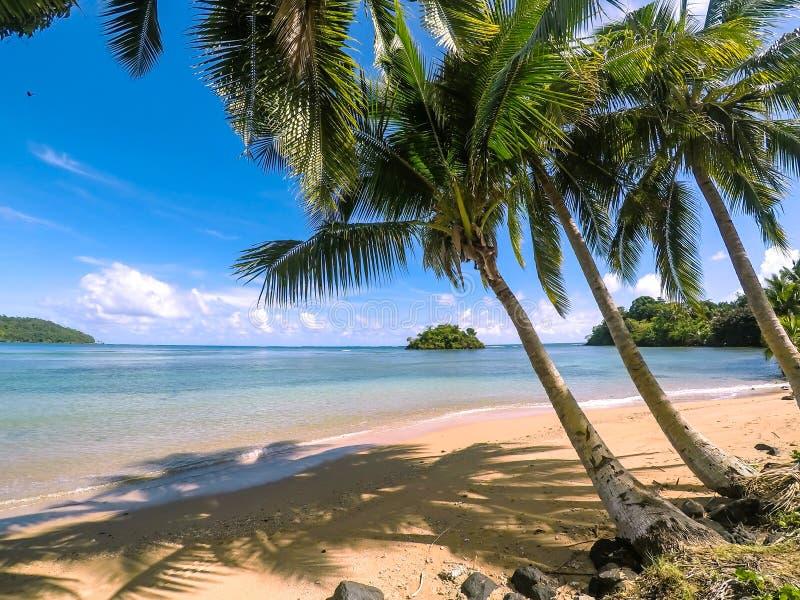 Идилличный тропический рай пляжа с золотым песком, пальмами и стоковое фото rf