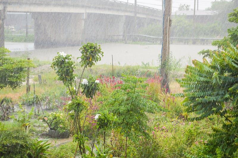 Идти дождь день стоковые изображения rf