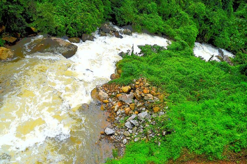 Идущий поток с пенообразными водой, камнями и иллюстрацией ландшафта природы растительности совсем вокруг - стоковое изображение