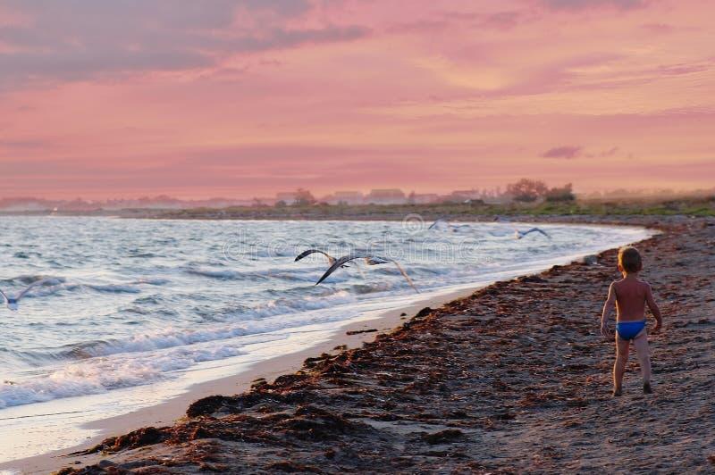 Идущий ребенок на пляже на красивом красном заходе солнца стоковые изображения rf
