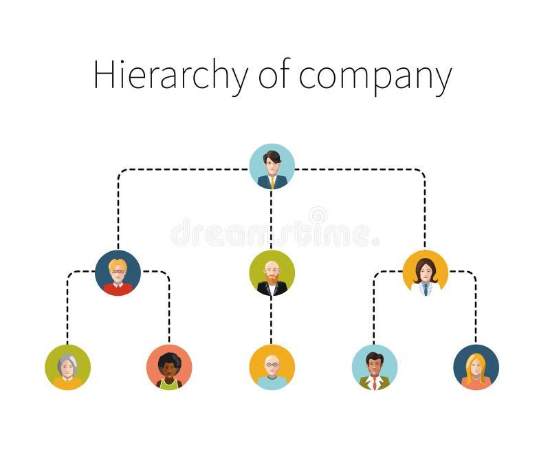 Иерархия изолированной иллюстрации компании плоской бесплатная иллюстрация