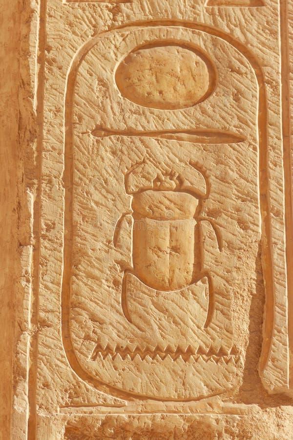 Иероглиф скарабея высекая на стене в виске ферзя Hatshepsut в Луксоре, Египте стоковая фотография rf