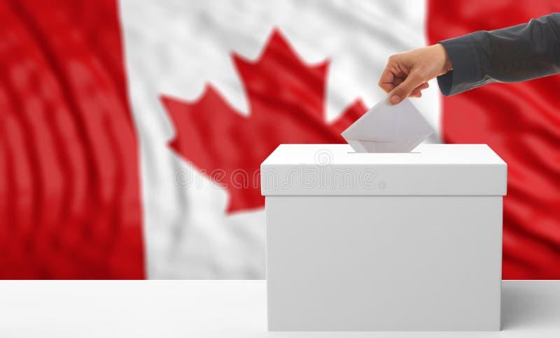 Избиратель на предпосылке флага Канады иллюстрация 3d стоковое изображение rf