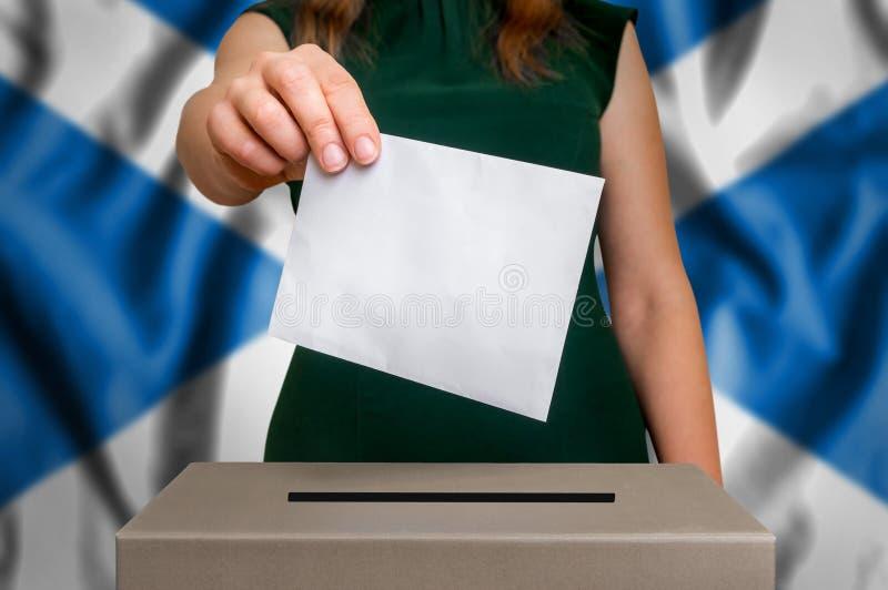 Избрание в Шотландии - голосующ на урне для избирательных бюллетеней стоковое изображение rf