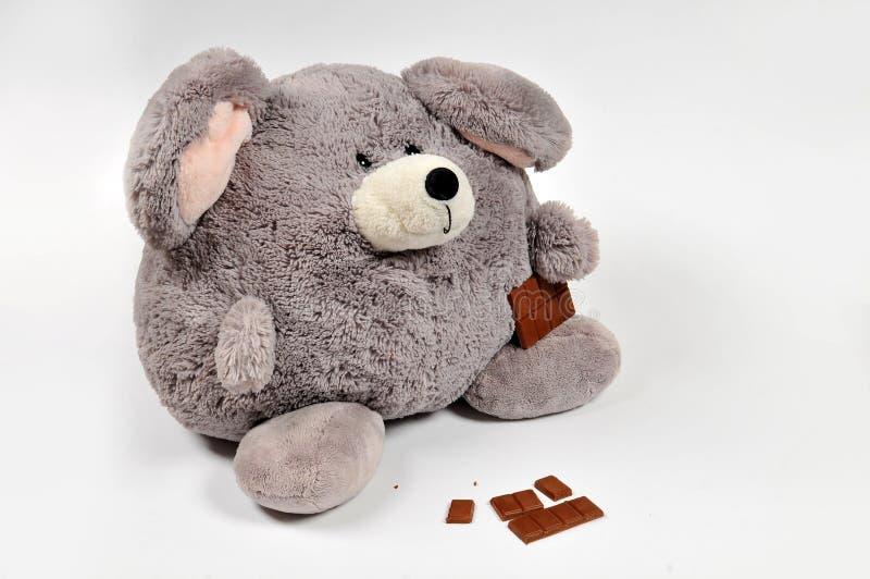 избыточный вес мыши еды шоколада стоковая фотография