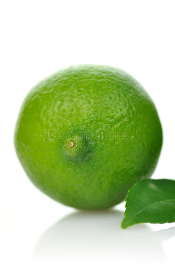 Download известка стоковое фото. изображение насчитывающей green - 18383052