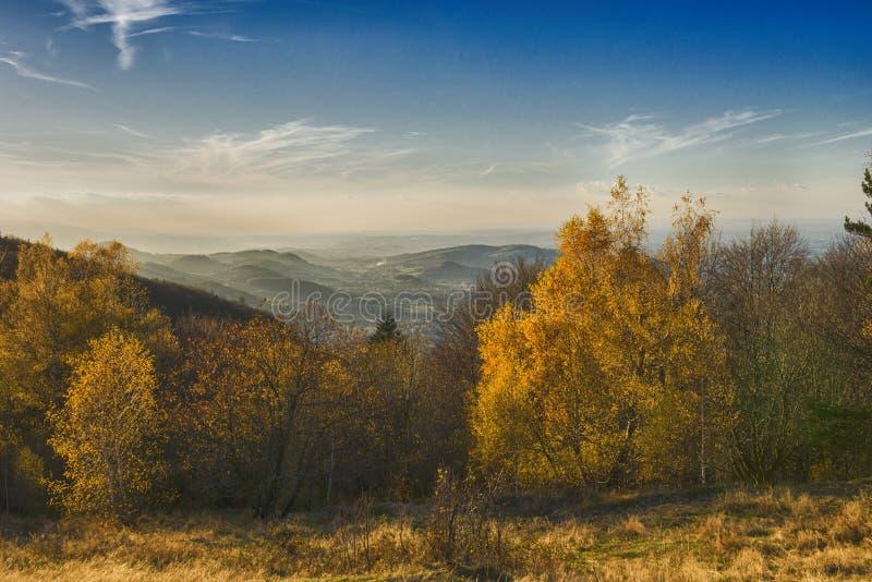 Известная золотая польская осень в блеске солнца стоковое изображение
