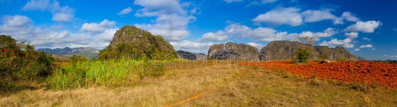 Известная зона табака обрабатываемой земли Кубы, Долина de Vinales, Куба стоковые фото