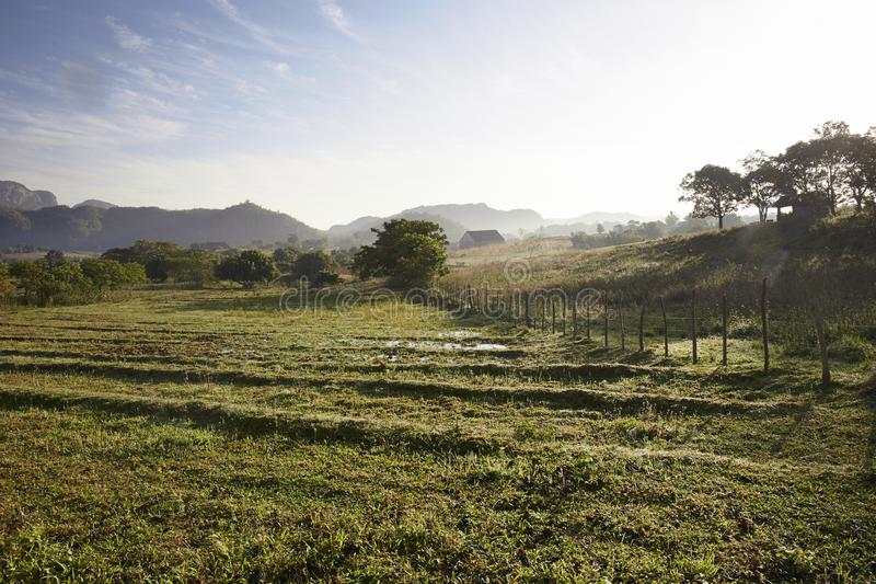 Известная зона табака сельскохозяйственных угодиь Кубы на заходе солнца, Долине de Vinales, стоковая фотография