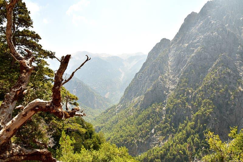 Известное ущелье Samaria, Крит стоковое фото rf