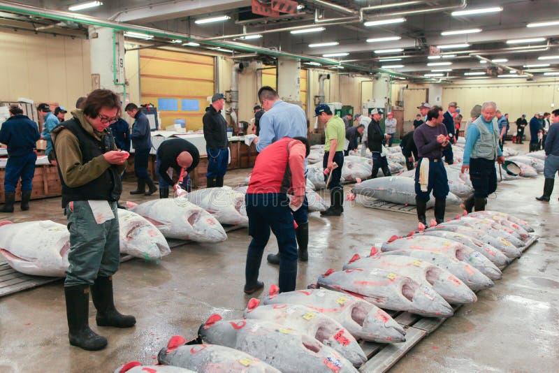 Известный аукцион тунца на рыбном базаре Tsukiji стоковые фотографии rf