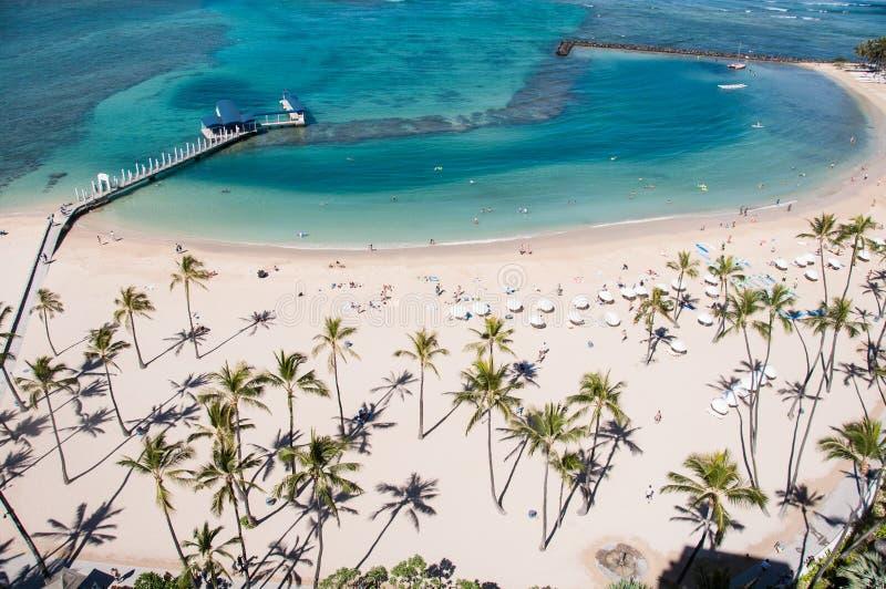 Известный пляж Waikiki стоковые изображения rf
