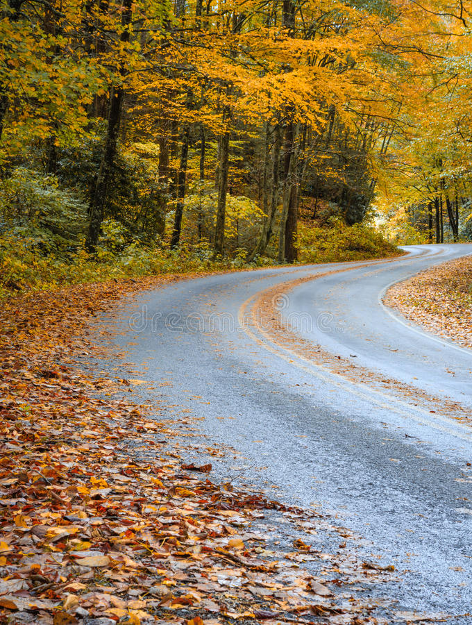 Извилистая дорога в осени в Северной Каролине стоковое фото