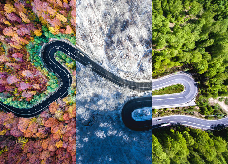 Извилистая дорога в colag осени, лета и зимнего времени леса стоковое изображение
