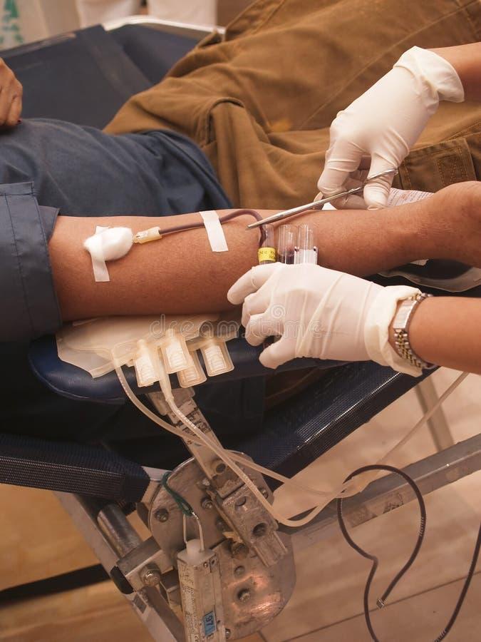 извлечение крови стоковое фото