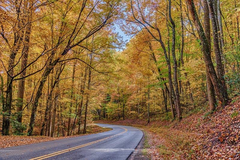 Изгибать закоптелую дорогу горы с цветами осени стоковая фотография