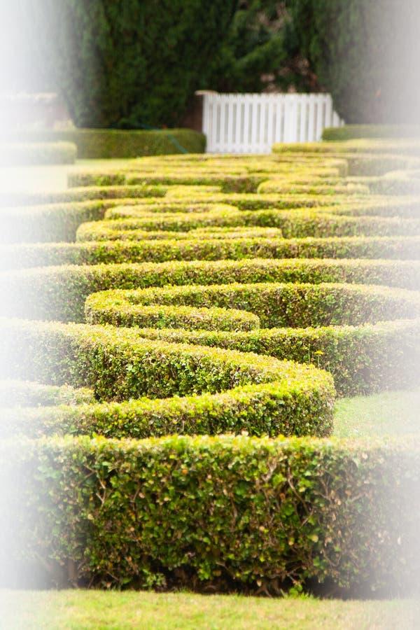 Изгороди парка страны Chatelherault стоковая фотография