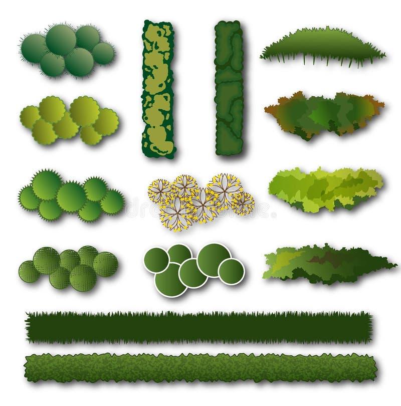 Изгороди и комплект куста для дизайна ландшафта иллюстрация вектора